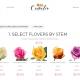 Flower Shop Create Your Bouquet